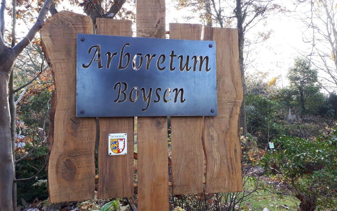 Rundgang durch das Arboretum