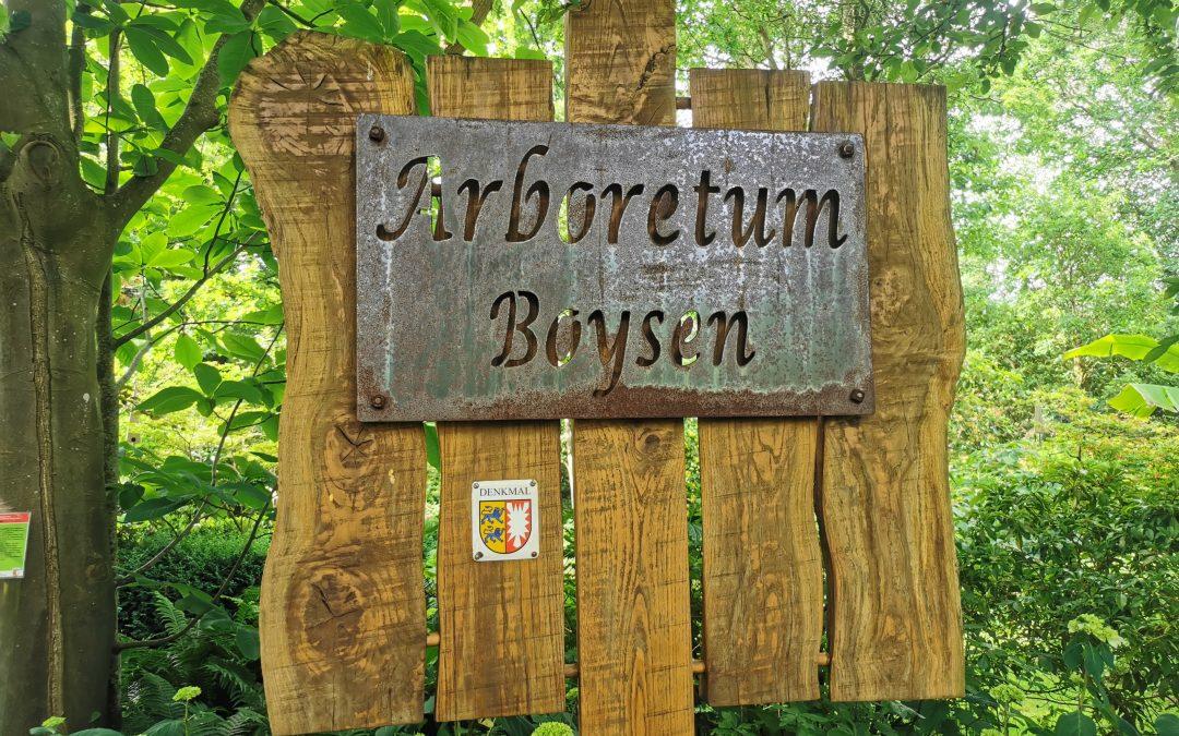 Rundgang durch das Arboretum mit Grit Kaysa